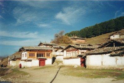 画像1: アンティークジービーズ(チベット天珠)二眼 タクツァン・ラモ