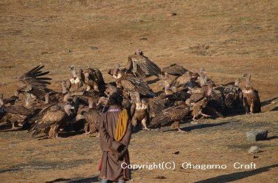 画像1: カパーラの御数珠(チベタンKapala MALA )